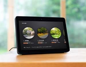 AmazonのSilkブラウザ以外にもMozillaのFirefoxが利用可能で、YouTube動画やAmazonプライム・ビデオも視聴できる。また、操作はスクリーンキーボードによるタッチ操作