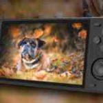 「RGB10 MAX」が大ヒットか?  超人気の携帯ゲーム機と徹底 比較!